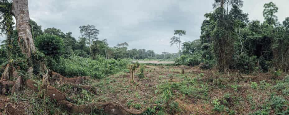 Panoramic view of the agricultural area next to the village of Lokolama, near Mbandaka, DRC
