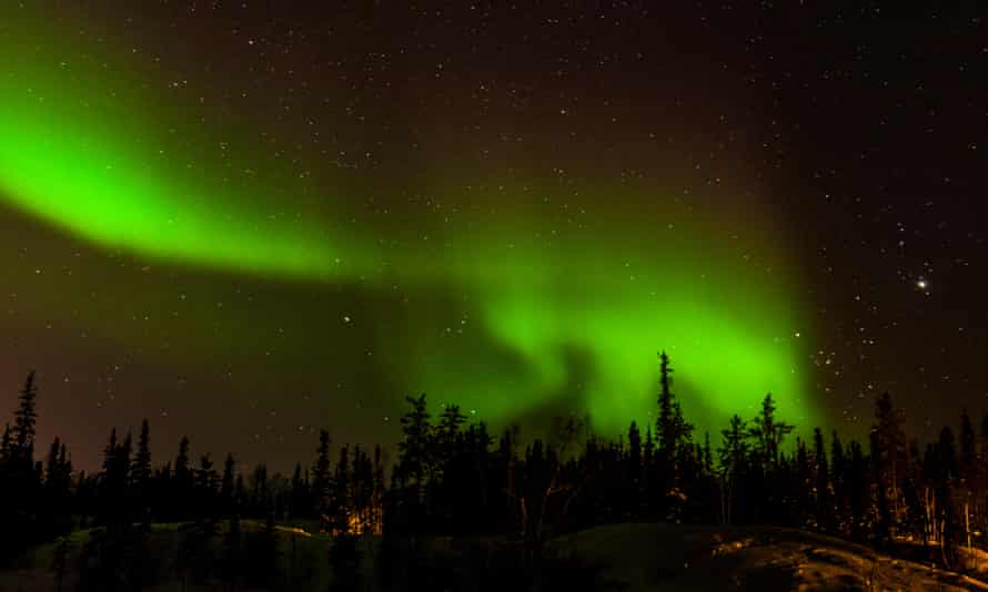 Aurora borealis, above the treeline, in Yellowknife, Canada.