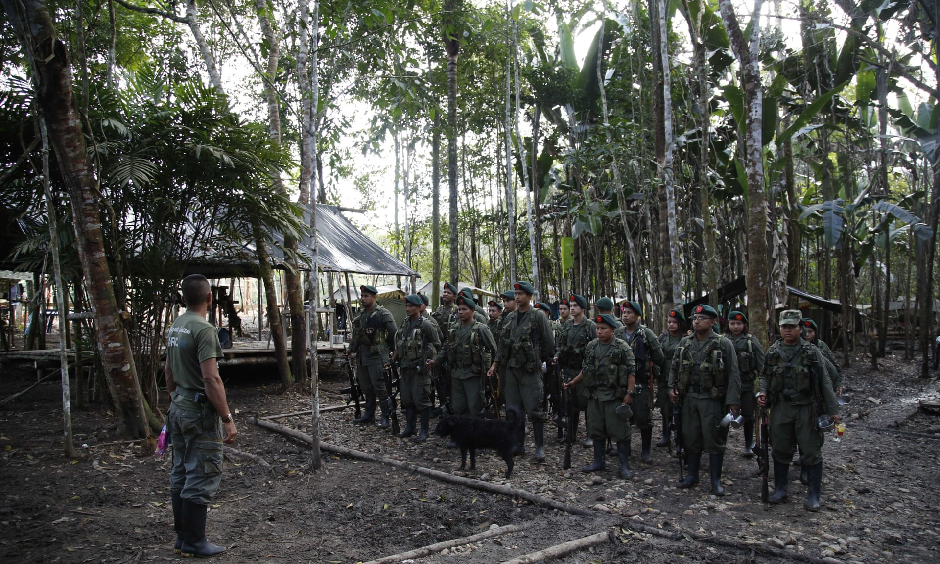 Farc rebels stand in formation in the jungle of Putumayo, Colombia. Photograph: Fernando Vergara/AP