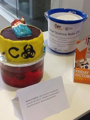 Chemotherapy development cake