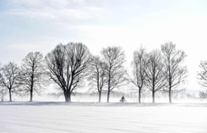 Eichenau, Germany A cyclist rides along a snow-covered alley in foggy winter weather, with temperatures around the freezing point