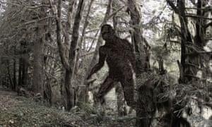 Beware the sasquatch, aka big foot ... Photograph: Alamy