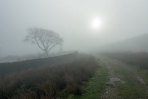 Eerie-looking sunlight on a misty day