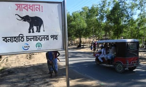 A sign that reads 'warning – route for wild elephants' is pictured near Bangladesh's Balukhali camp for Rohingya refugees.