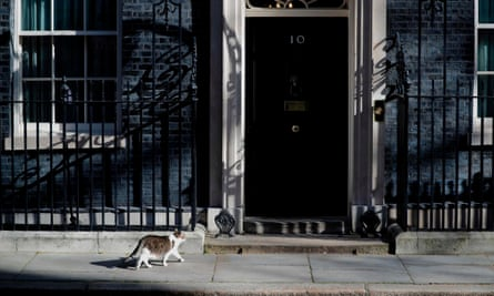 Larry waits heads to be let into No 10 as Boris Johnson was being treated in intensive care for coronavirus.