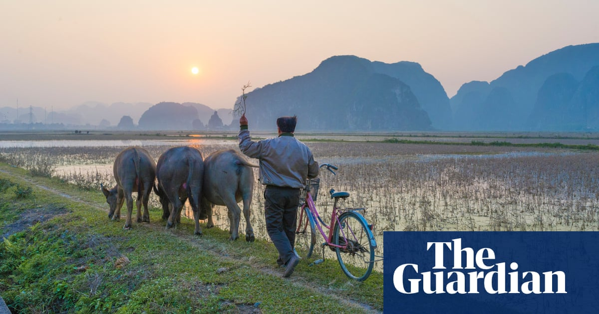 Things to do in Vietnam: readers' travel tips | Travel | The Guardian