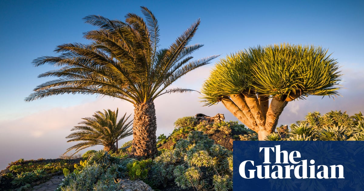 A holiday guide to the Canary Islands