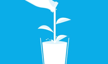 White gold: the unstoppable rise of alternative milks