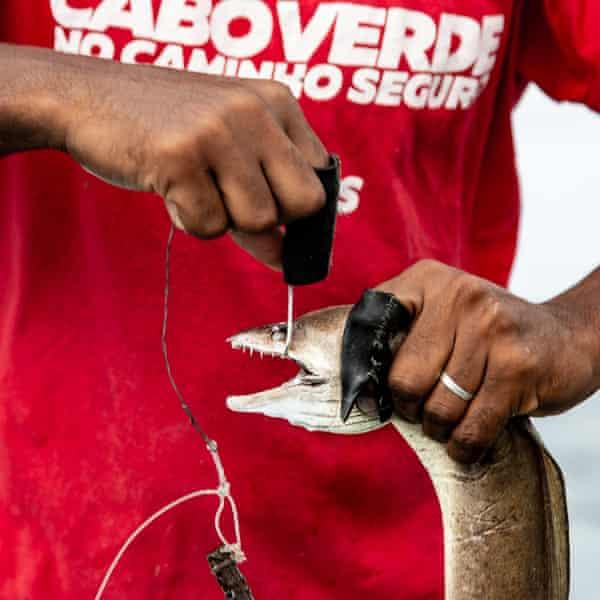 Carlitos Fernandes lands a Moray eel.