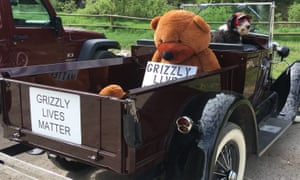 Ann Smith, one of the activists, drives around with an enormous bear and a 'Grizzly Lives Matter' sign to bring attention to the cause in Jackson Hole.