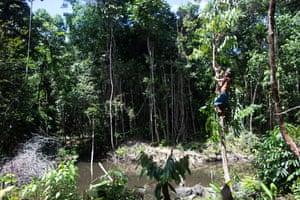 A pesquisa acadêmica apóia as denúncias indígenas sobre o efeito da mineração na biodiversidade da reserva.
