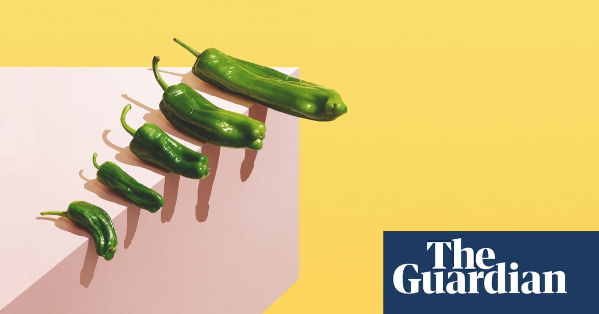 'I wanted a truncheon in my pants': the rise of the penis extension