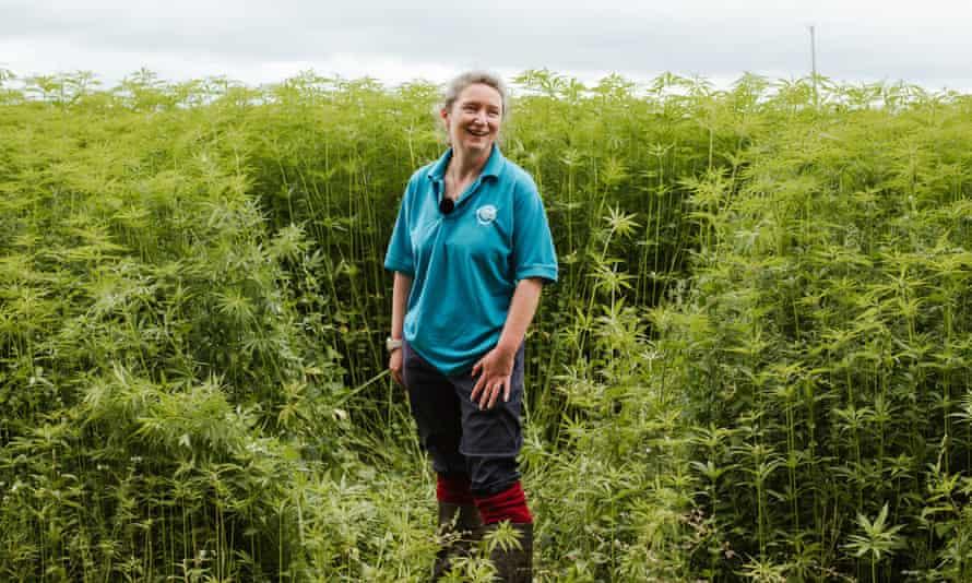 Dr Lynda Deeks in a hemp field