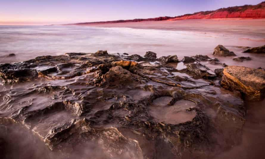 The prints, found along the Kimberley shoreline, belong to about 21 different types of dinosaur, and are thought to be the most diverse collection of prints in the world.