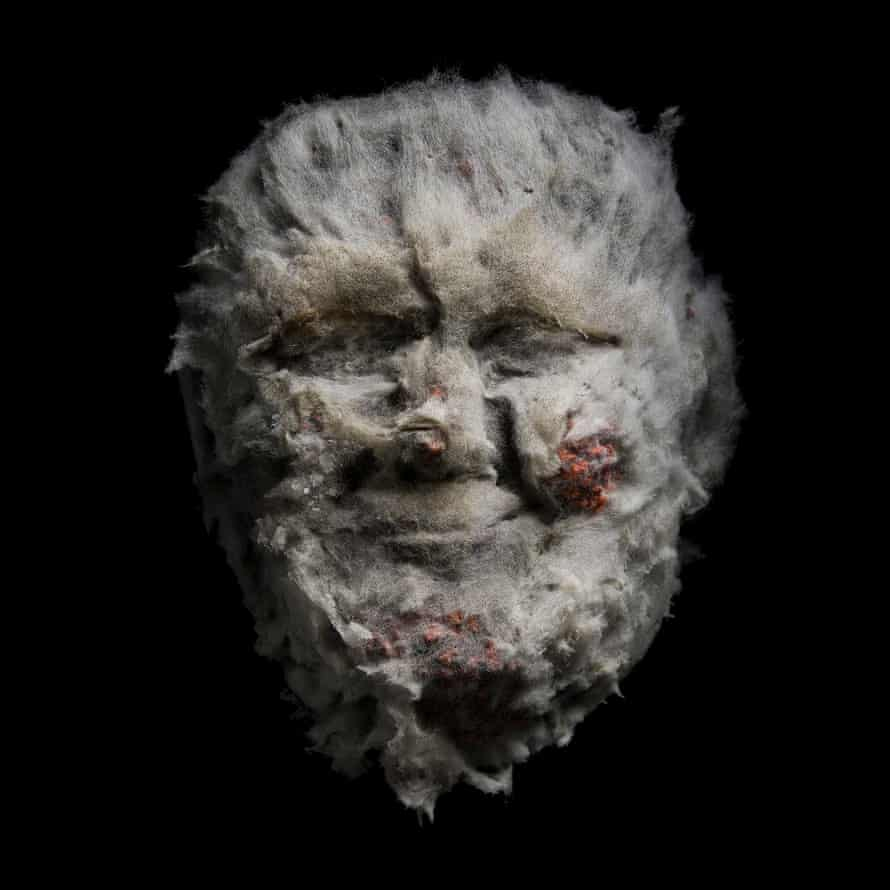Klaus Enrique used Cheetos left to grow mold to depict Trump's face