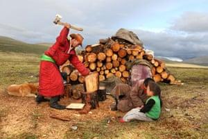Tsaatan man chopping wood with his family