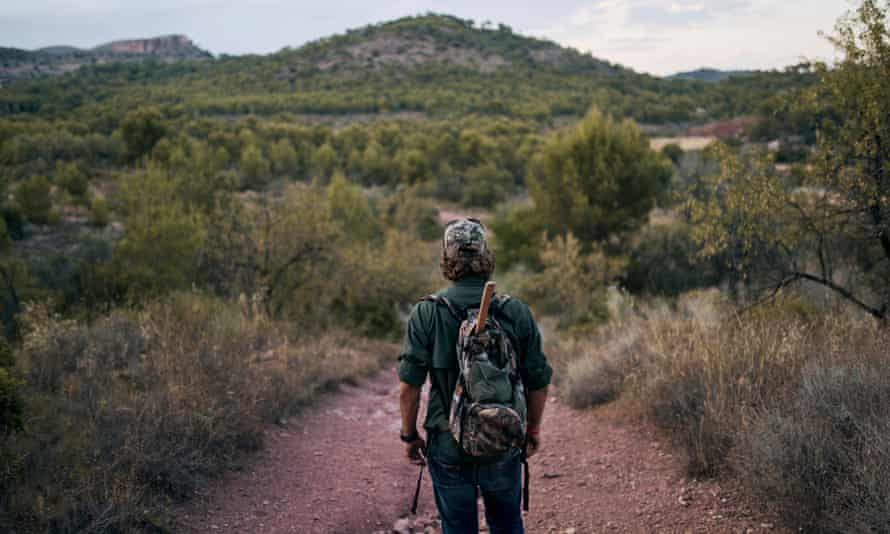 Mature man looking at landscape while standing in forest