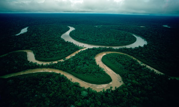 Trees in the Amazon are the world's sweat glands – and 10 other essential climate facts