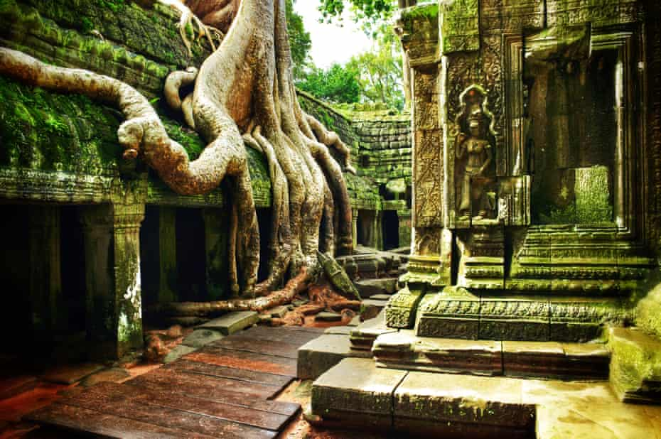 The temple of Ta Prohm at Angkor Wat, Cambodia.