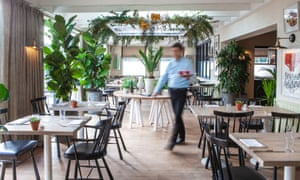 The light dining room at Gallivant, with blond wood floors and many plants