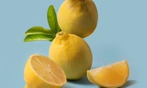 In one Sydney fruit shop lemons were being sold for $13 a kilogram.