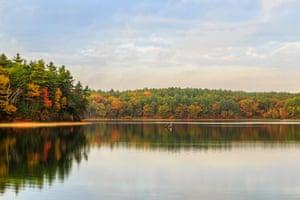 Proximate wilderness … Walden Pond at sunrise.