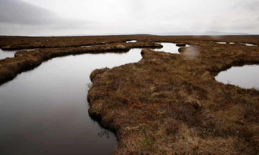 The Flow Country in the far north of Scotland