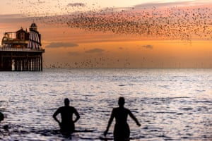 Brighton, EnglandPeople watching the nightly starling murmuration at Palace Pier before the birds roost for the night