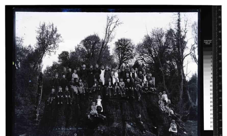 Children on the Fieldbrook stump, date unknown