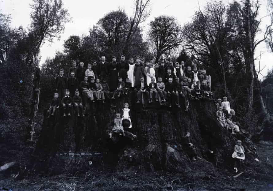Children on the giant redwood Fieldbrook stump, date unknown