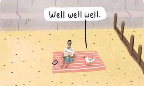 Stephen Collins on seagulls – cartoon