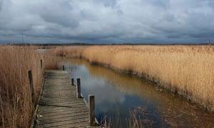 hickling broad nature reserve, norfolk, england