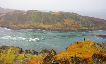 Person on rugged shore Wild Art Scotland  wilderness retreat