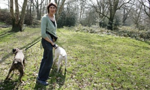 Michele Hanson on Hampstead Heath with her dogs