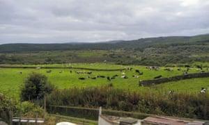 Sgriob-ruadh Farm