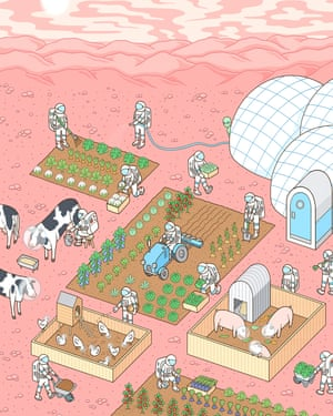 """'When I started the general idea was: """"Food? Yeah, you just bring it along"""": gardening in space."""