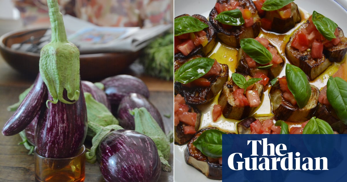 Rachel Roddy's recipe for roast aubergine with tomato and basil