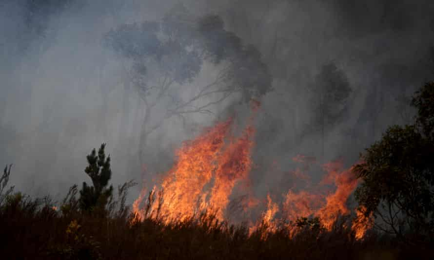 A bushfire burns in the Tallaganda national park