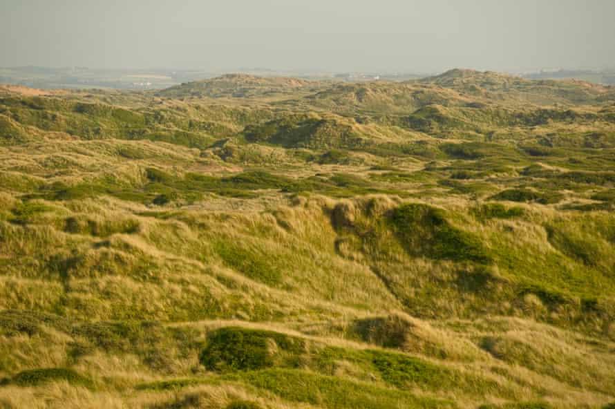 A view along Braunton Burrows from near Saunton village, a unique habitat designated a UNESCO Biosphere Reserve, on the North Devon Coast