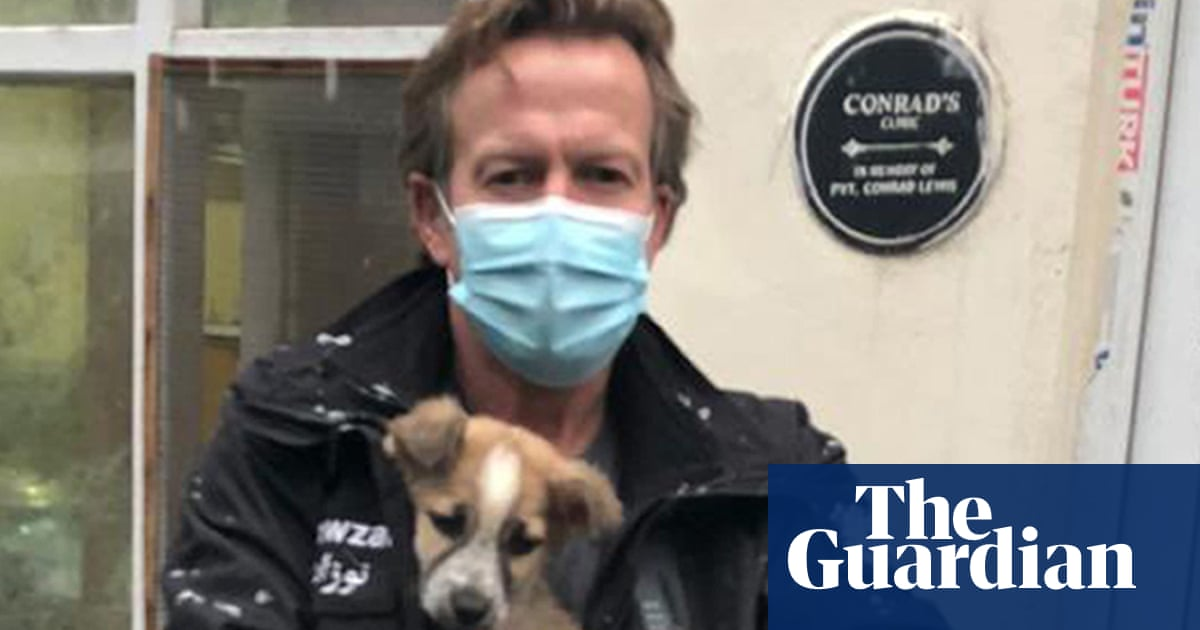 UK defence secretary complains about pleas to rescue pets from Kabul