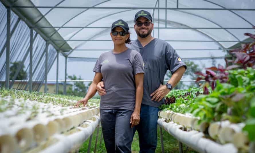 Efrén Robles and his wife Angelie Mart'ínez, owners of Frutos del Guacabo, a culinary agriculture farm, inside one of their hydroponic greenhouses.