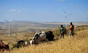 Men walk along a road with cattle near turbines at Ashegoda wind farm in Ethiopia's northern Tigray region, on November 28, 2013.