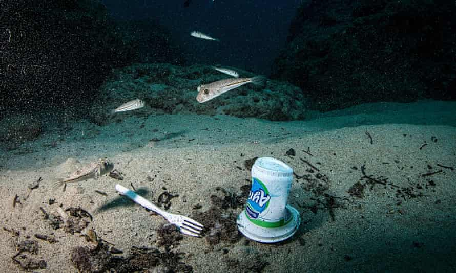 Fishes swim near a plastic fork and a bottle off the coasts of Samandag in Hatay province of Turkey