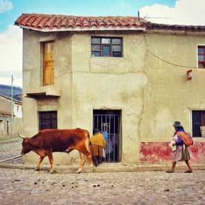 A cow walks through the cobbled village street of Morado K'asa in Bolivia followed by a farmer. A woman behind a barred door watches them pass.