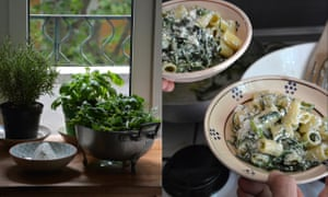 Rigatoni with ricotta and greens