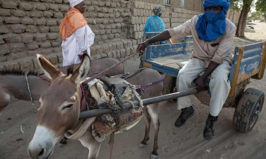 A rubbish collector and his donkey in Timbuktu, Mali.