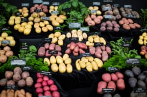A variety of colours and sizes: potatoes on show