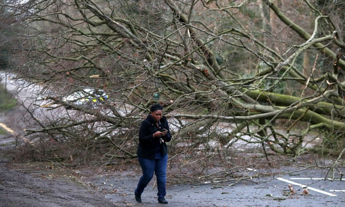 Storm Eleanor: at least four injured by fallen trees | UK news | The