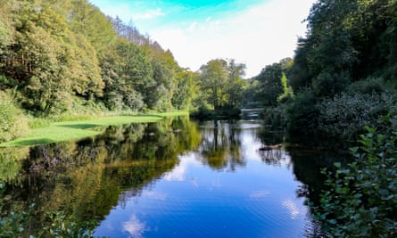 Haven from the M4 … the Upper Lake at Penllergare Valley Woods near Swansea.