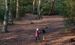 A stroll on Putney heath.